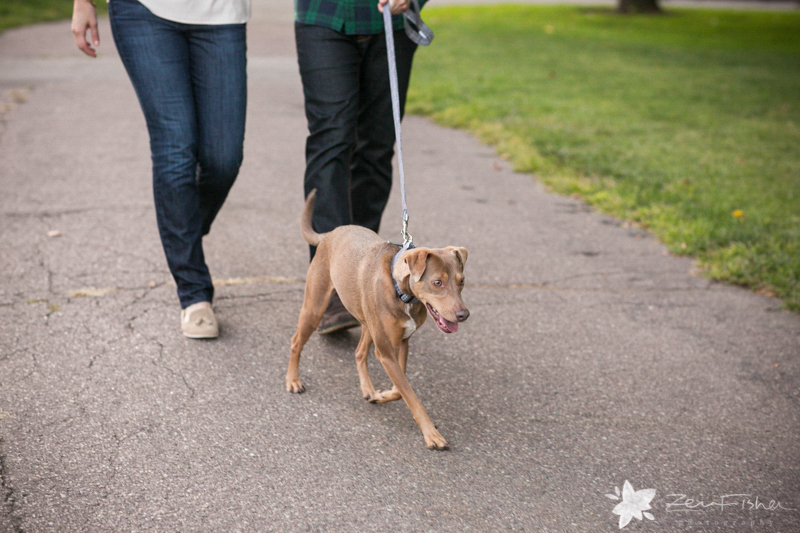 Boston Engagement Portraits, Boston Engagements, Wedding Dogs, Dog of Honor