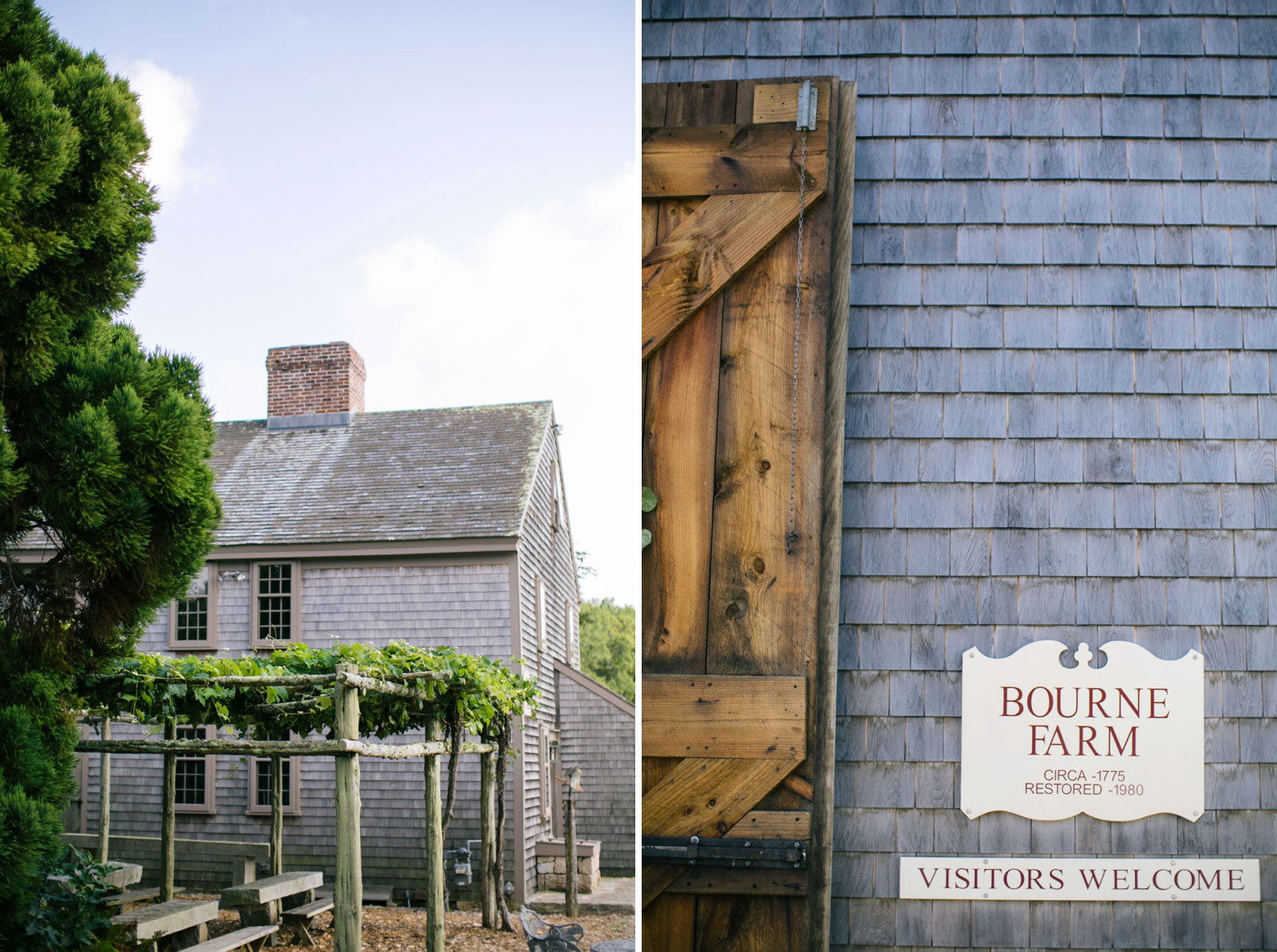 the grounds of Bourne Farm in West Falmouth on Cape Cod, grape vines and barn entrance