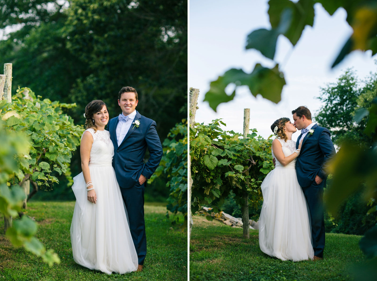 Bride and groom portrait with grape vines on farm, bride and groom pulling each other in and kiss