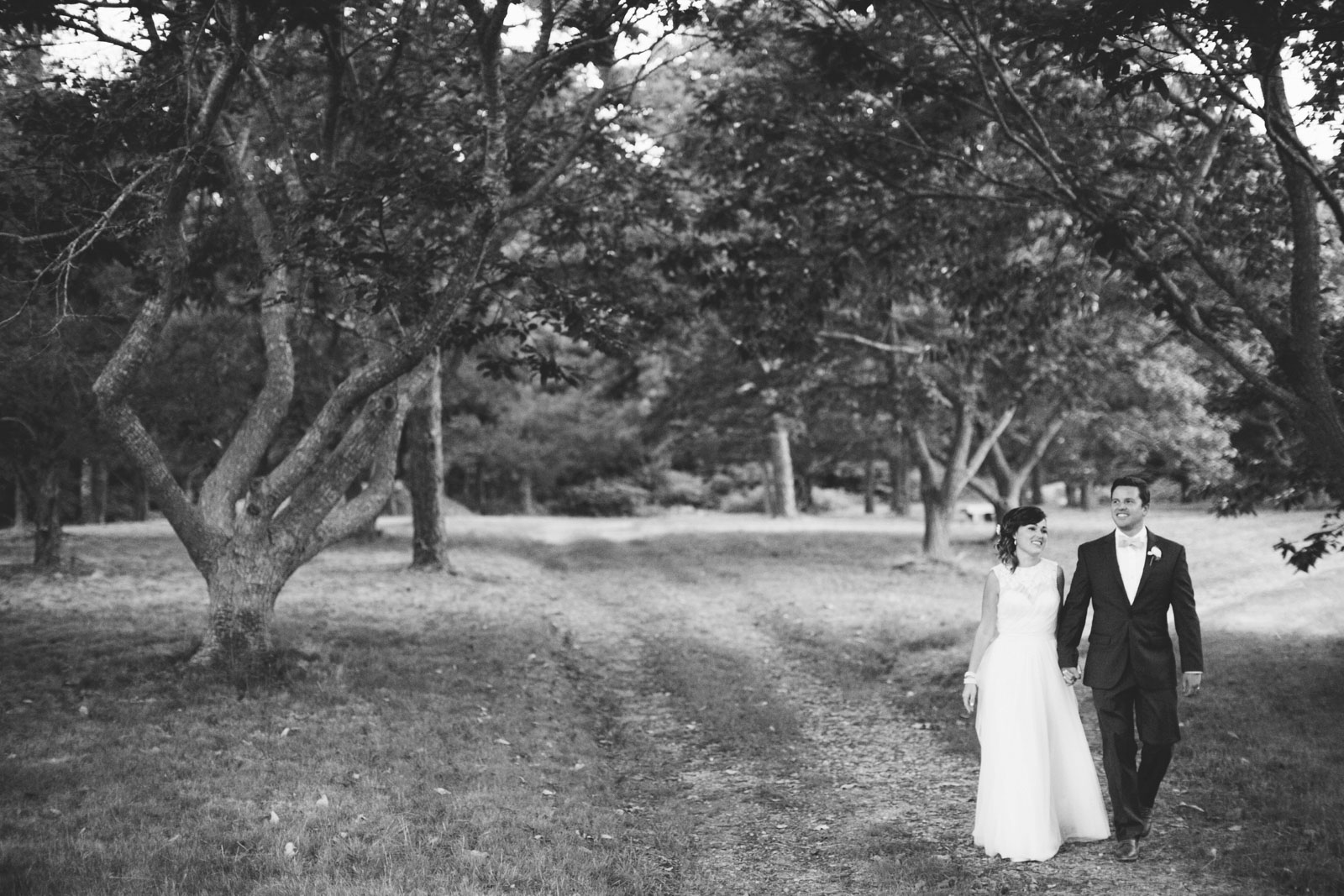 Bride and groom holding hands walking down a path of apple trees at Bourne Farm in black and white