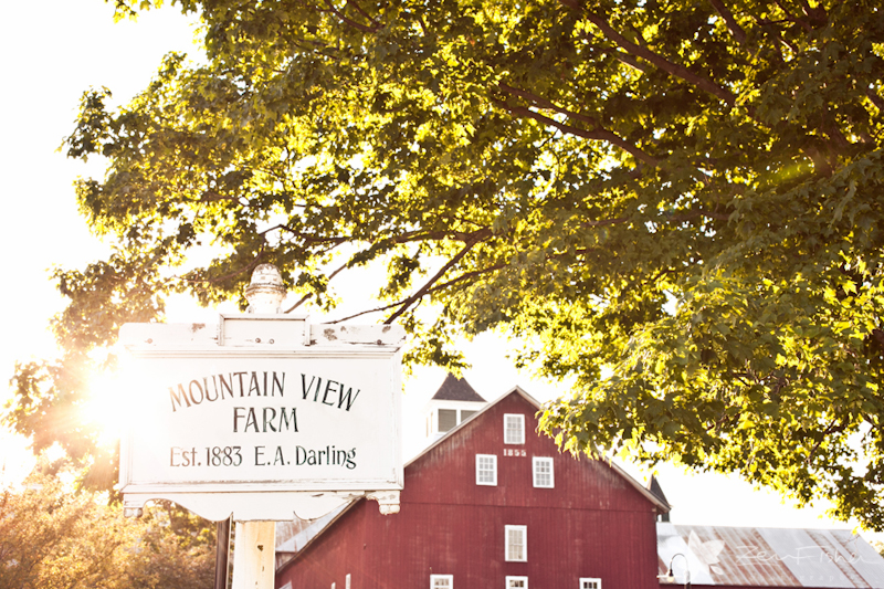 Vermont Wedding, Mountain View Farm Wedding, Barn Wedding, Zev Fisher Photography, VT Weddings