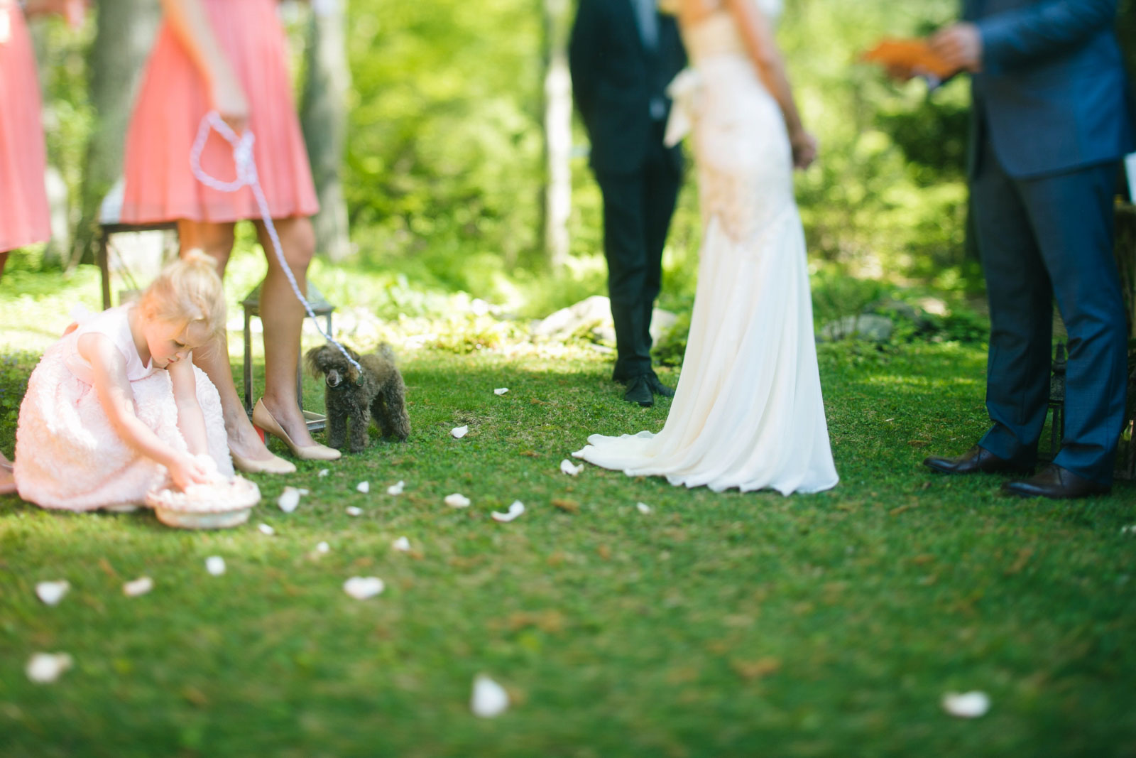 flower girl playing with flower petals during wedding ceremony with dog going down the aisle